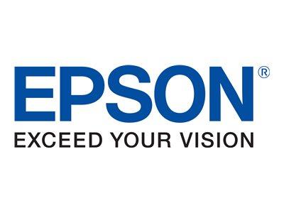 EPSON-T603600