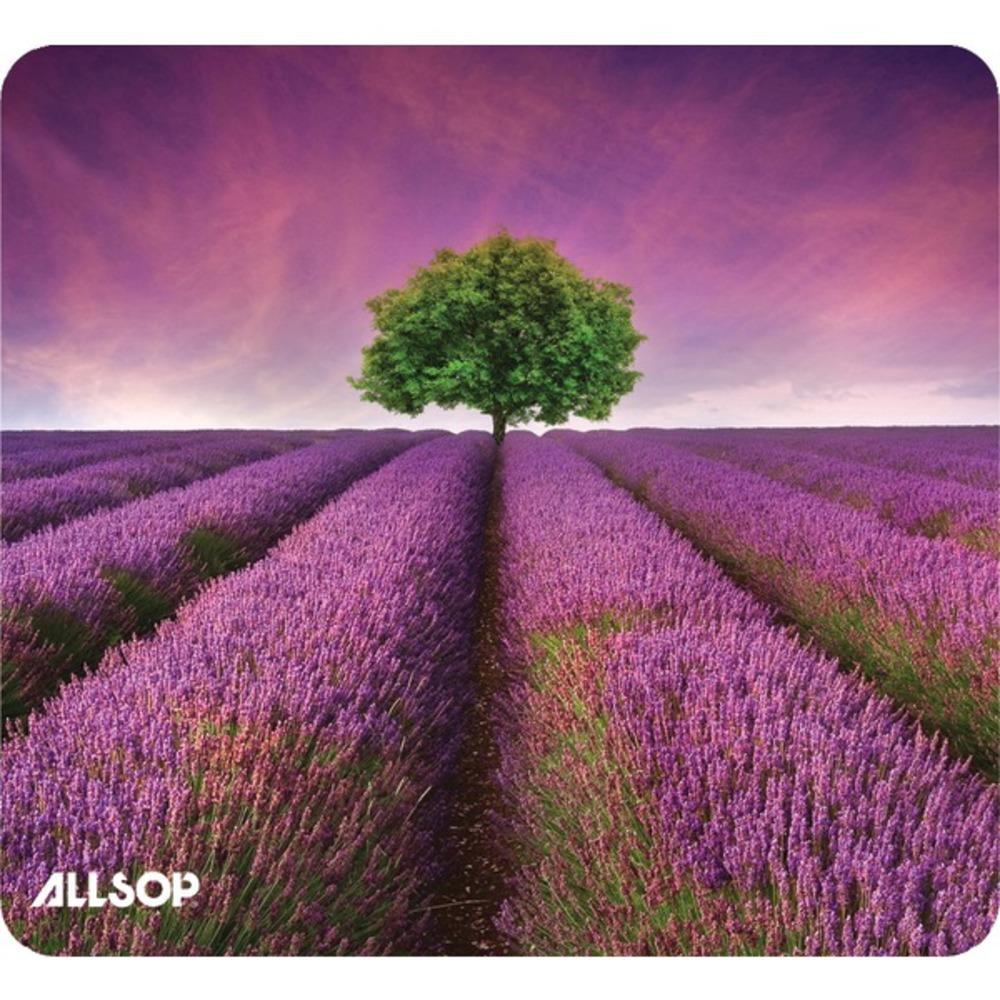 Allsop-31422