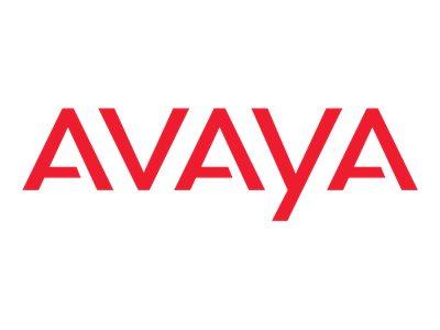 EXTREME AVAYA-AA1419065-E6